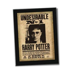 Cuadro Harry Potter Undesirable Nº 1 22x31x1.7cm