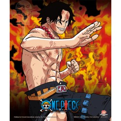 Poster 3D Brothers Burning Rage One Piece